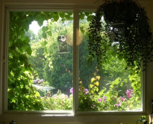 ventana-yoga